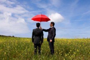 Страхование внешних и внутренних рисков