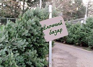 Бизнес на елках