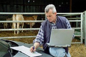Фермерский бизнес с нуля