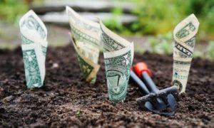 Куда вложить деньги чтобы получать доход ежедневно