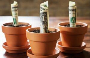Инвестирование в ПИФы