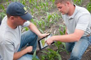 Работающие идеи для села, сельской местности, в сельском хозяйстве