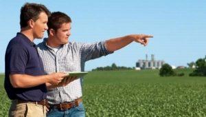 Бизнес в сельском хозяйстве круглогодичный