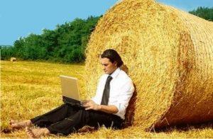 Бизнес в сельском хозяйстве: идеи, первые шаги